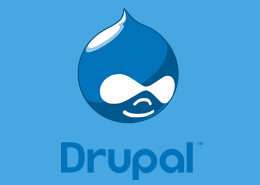Best and Cheap Drupal Hosting Providers Offering Powerful Support in UK