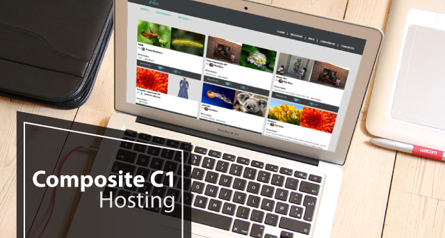 Choose Best and Cheap Composite C1 6.0 Hosting in Europe