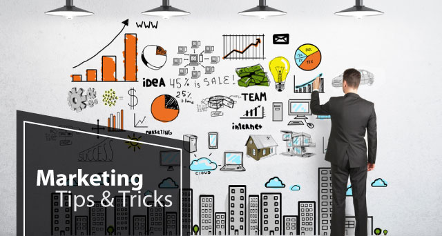 Social Media Strategy for Twitter, Facebook, LinkedIn, Google+, Pinterest, Instagram, Snapchat