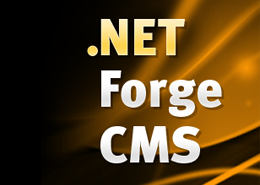 Best & Cheap .NET Forge CMS Hosting That Offer Realiable Service in UK